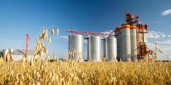 Агропромышленный комплекс ЕАЭС: маршруты интеграции