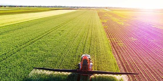 «Курс на органику». Евразийский союз развивает интеграцию в сельском хозяйстве